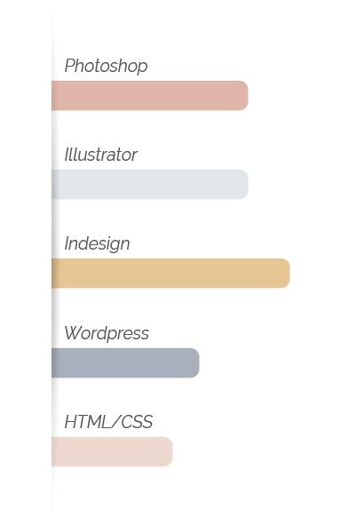graphique-competences-mobile