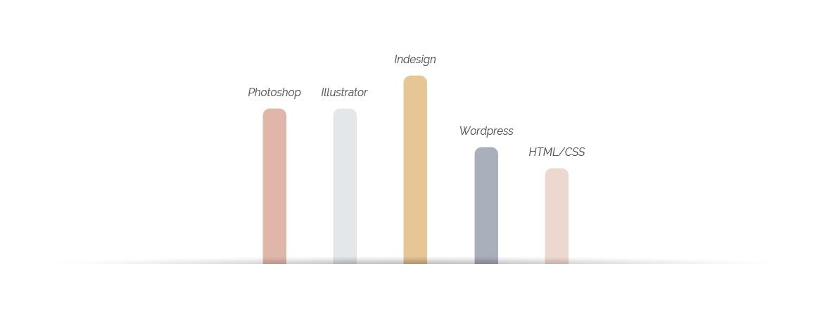 graphique-competences